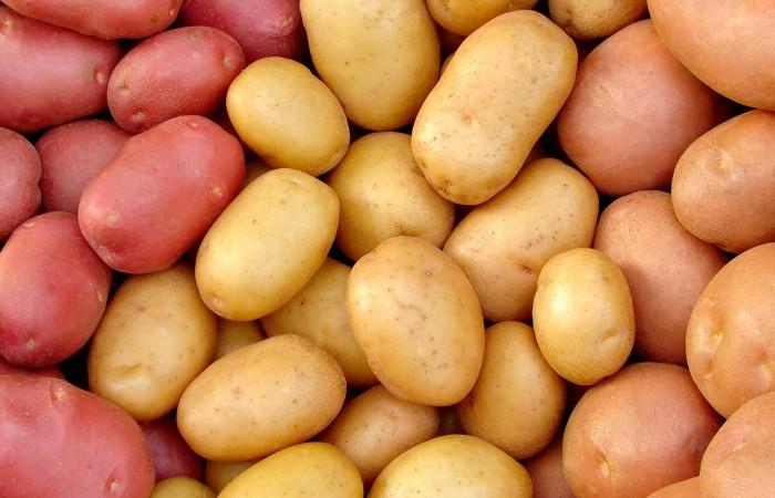 Картошка_разная